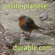 petite planète durable.com